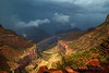 Treasure after the Storm, Grand Canyon National Park