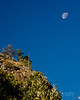 Early Morning Moon, Big Bend National Park