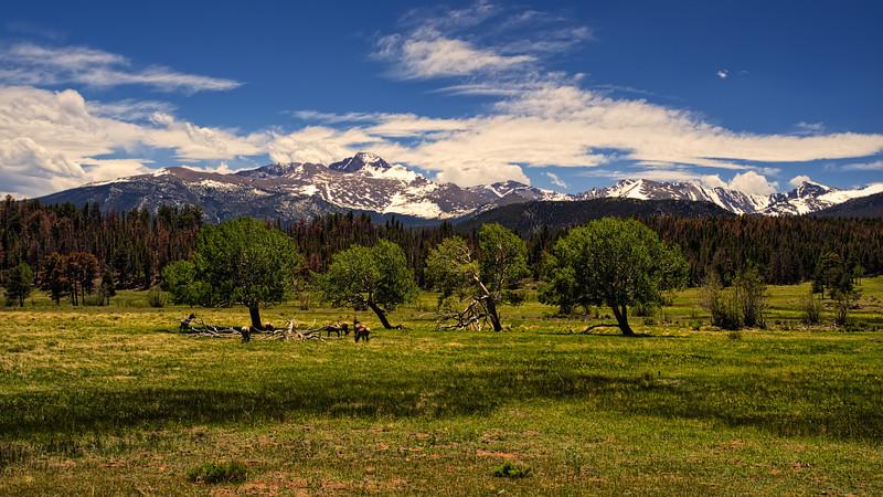 Long's Peak from Upper Beaver Meadows