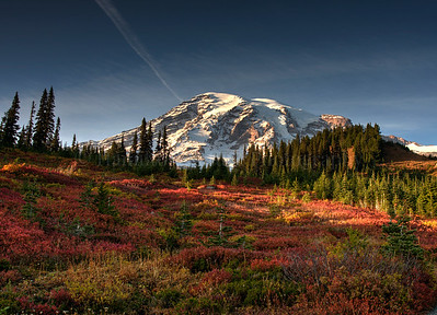 Mt. Rainier Fall Colors