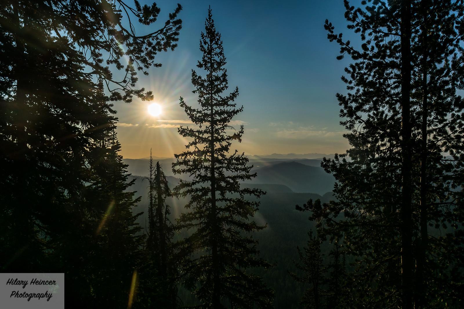 Mount Washburn Sunrise