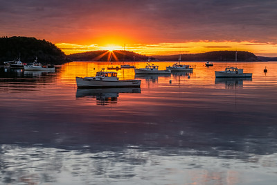 Bar Harbor Sunburst