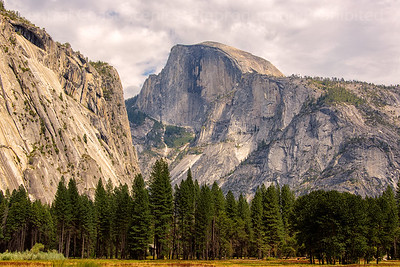 Half Dome from Ahwanhee Meadow 2