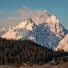 Grand Teton Majesty