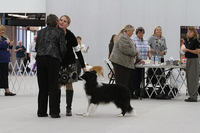 Winners Dog Class Candids
