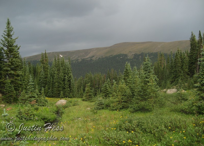 Storm clouds were building as we made our way back to the trailhead.