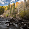The Poudre River flows through this photograph with the fall color flowing down the hill.