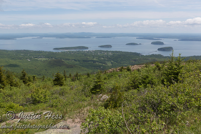 The view from Cadillac Mountain