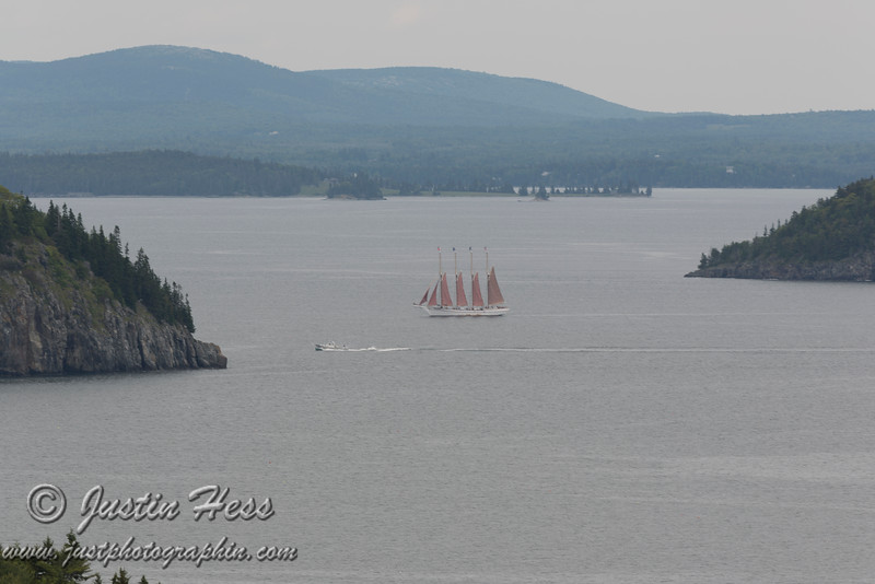 Margaret Todd returning to Bar Harbor