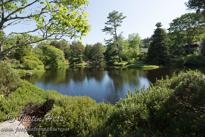 Asticou Azalea Garden from the Pine Mountain Scape area.