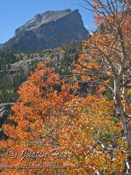 Hallett Peak and fall color.