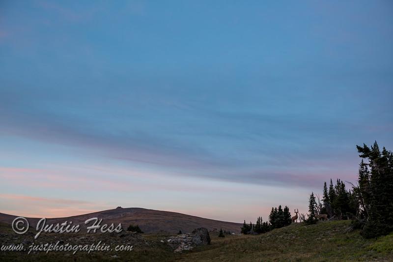 Chapin Sunrise Colors