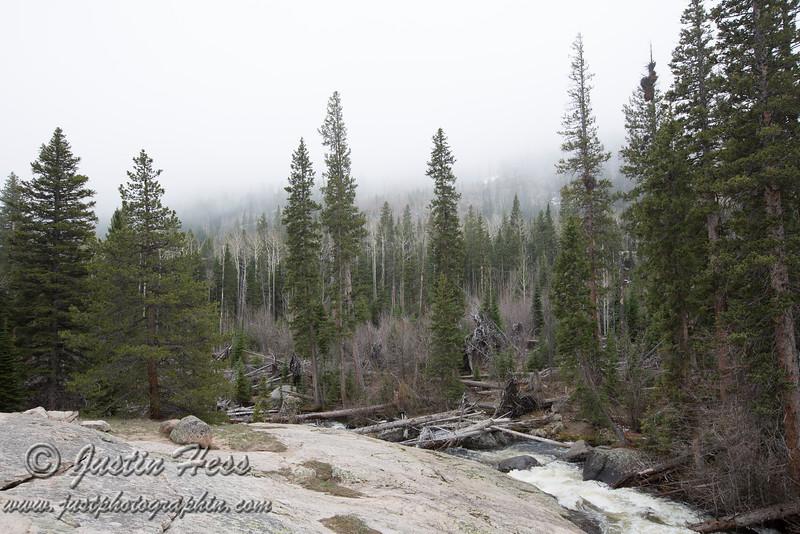 Wild Basin Fogged In.