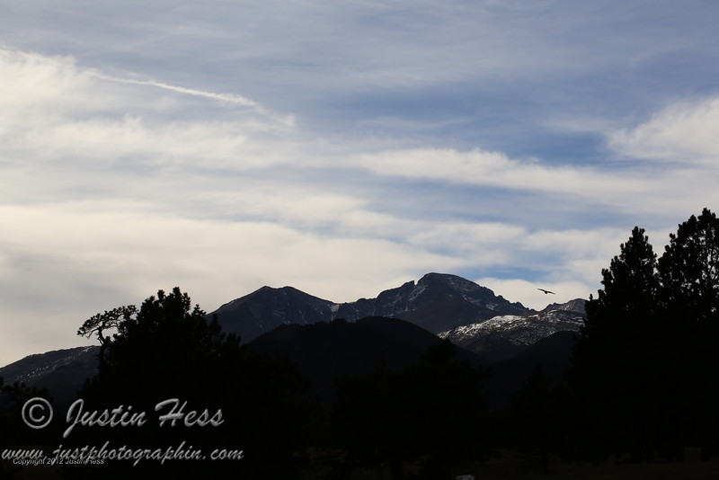 Meeker and Longs Peak with a surprise bird flying through!  11-28-2012