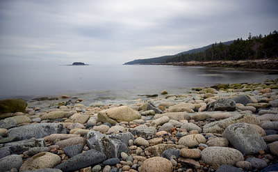 Seal Point/Harbour