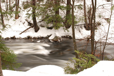 Winter in Algonquin