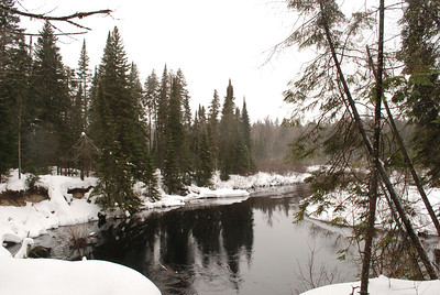 Winter in Algonquin