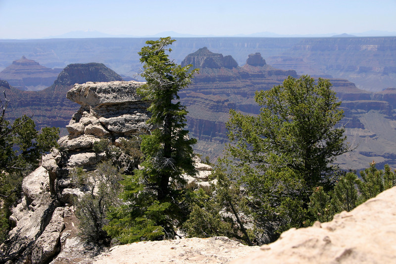 Bright Angel Point Trail<br /> North Rim of Grand Canyon