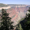 Widforss Trail<br /> North Rim of Grand Canyon