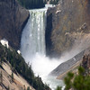 Lower Falls of the Yellowstone River from Artist Point