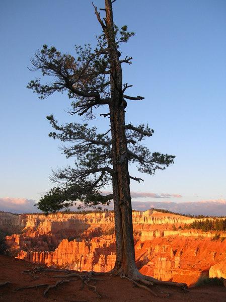 Sunrise at Byrce Canyon