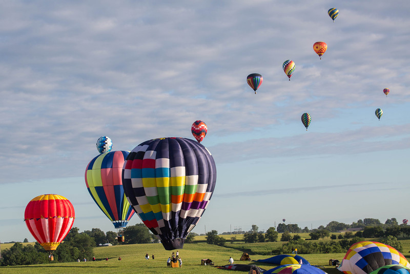 National Balloon Classic 2013-58290