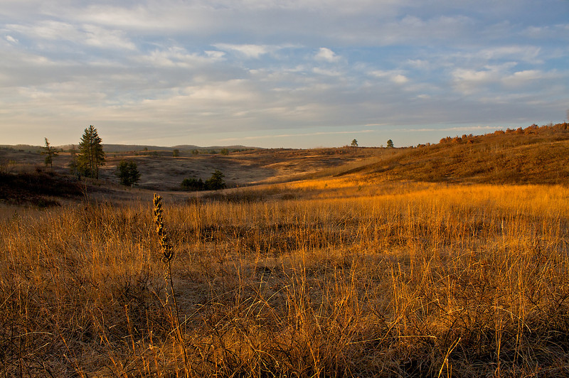 Rolling landscape of the Moquah Barrens.