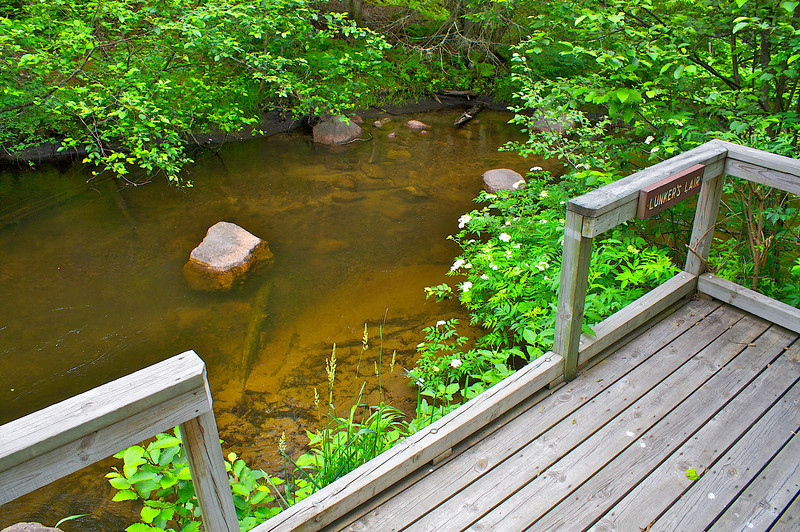Oconto Fishing Trail in the Nicolet.