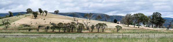 Farm Along Road From Canberra To Coast
