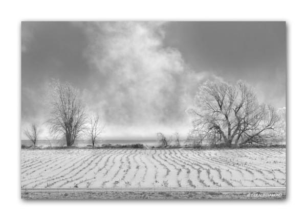 Winter - Ontario Farm #3  ©Gerald Diamond All Rights Reserved