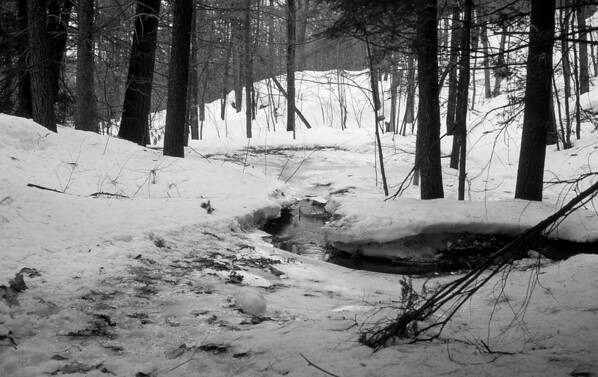 Early Spring in Quebec's Laurentian Mountains.  The snow begins to melt from the edges of the stream revealing the debris of Autumn.  ©Gerald Diamond All rights reserved
