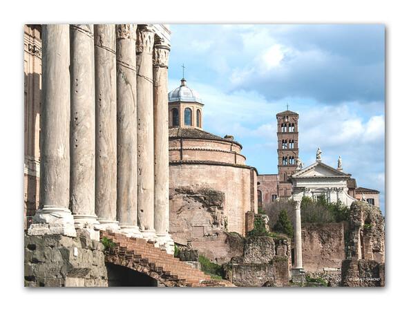 Roman Forum, Rome, 2013