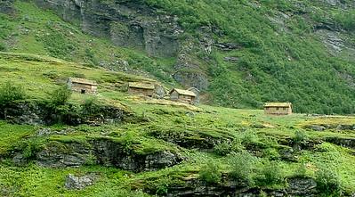 Fjord Life, Norway