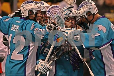 Rochester Knighthawks celebrate goal, Jarrett Davis, Shawn Evans, Joe Walters, Mike Accursi  LP-11-0093-36