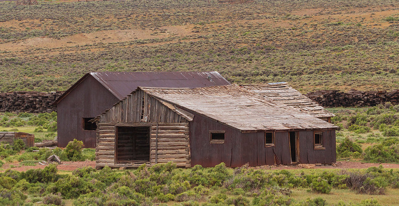 On our drive to Glacier National Park we passed this abandoned barn, somewhere in Southern Wyoming.