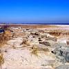 The Sandy Hook Beach