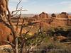 Landscape Arch Trail, ArchesNP UT (7)