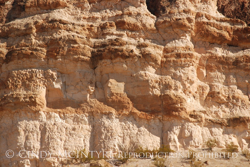 Burro Mesa Trailhead (2)