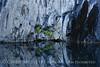 Cattail Falls (2)