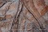 Rock Patterns Grapevine (6)