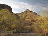Carousel Mountain fm Homer Wilson (4)