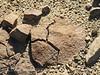 Fire-cracked rocks