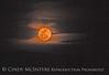 Moonrise 3-19-11 BBNP