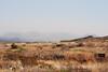 Approaching duststorm near Sam Nail Ranch