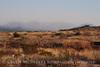 Approaching duststorm near Sam Nail Ranch (1)
