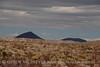Camp de Leon backcountry site (19)