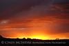 Corazones sunset (3)