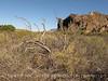 Burro Mesa between corral and red canyon