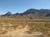 Burro Mesa trail from wash (4)