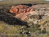 Burro Mesa, red canyon (12)